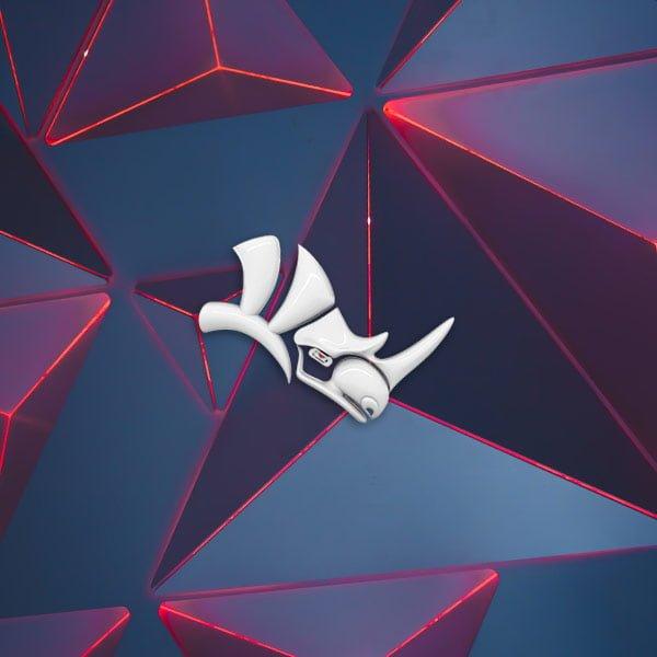 Formation Rhinoceros 3D
